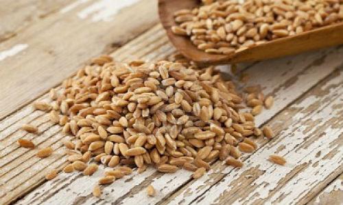 Cuidando da saúde das unhas - grãos integrais